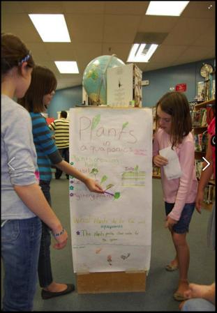 Aquaponics STEM Classrooms In Action Part 2